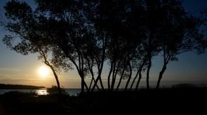 Ryto saulė